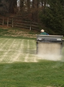 Green topdressing14
